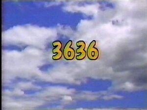 3636.jpg