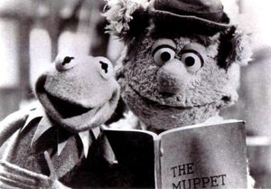 Kermit and fozzie tmm.jpg
