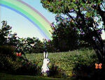 RabbitWeather