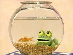 Ewfrogs-dorothy.jpg