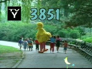 3851.jpg