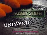 Sesame Street Unpaved (book)