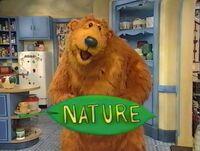 Bear207d