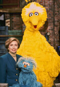 Hillary Clinton Rosita Big Bird