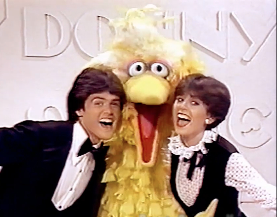 Donny & Marie (1976 series)