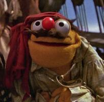 Lew zealand pirate