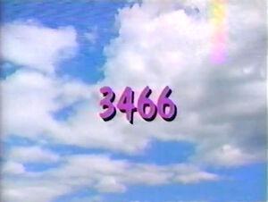 3466.jpg