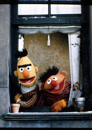 Ernie bert window.jpg
