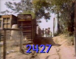 2427.jpg