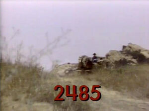 2485a.jpg