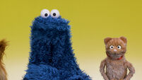 My Cookie Monster: Cats and Dogs