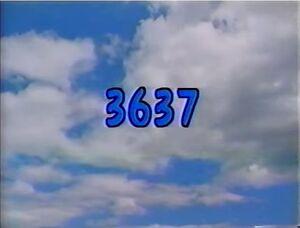 3637.jpg