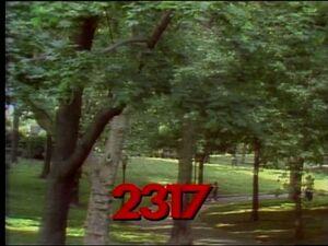 2317.jpg
