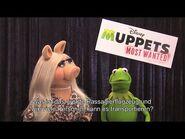Lufthansa Even globetrotters like Kermit & Miss Piggy need advice sometimes