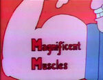 Melvinsmuscles
