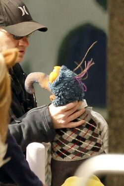 Gonzo-choking-BTS-Muppets.jpg