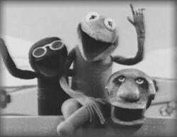 Kermit, Harry and Yorick