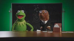 MuppetsNow-JoeKerm.jpg