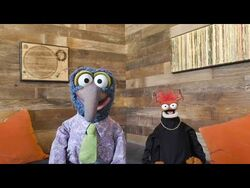 A Message from Gonzo and Pepe