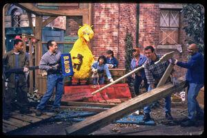 Hurricane production photo nest clean-up.jpg