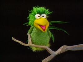 Clyde (bird)