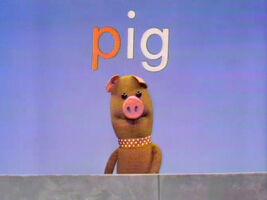 0168 pig