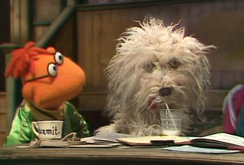 Muppy   Muppet Wiki   Fandom