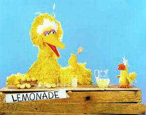Big Bird and Little Bird lemonade.jpg