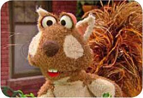 Elmo'sBackyard-Squirrel