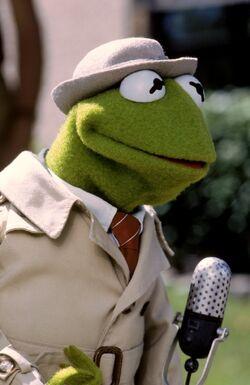 Follow That Bird Reporter Kermit.jpg