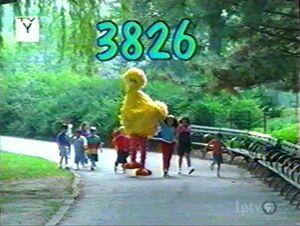 3826.jpg