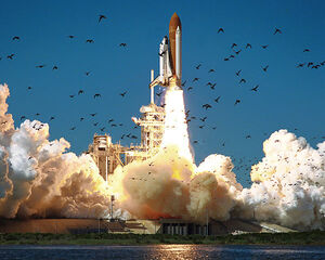 Space Shuttle Challenger STS-51-L.jpg