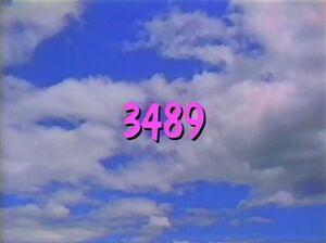 3489.jpg