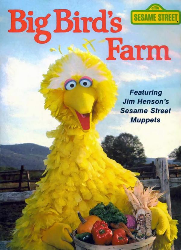 Big Bird's Farm