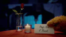 MuppetsNow-S01E06-Logo-MupClose&Personal03