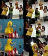 NEW Sesame China