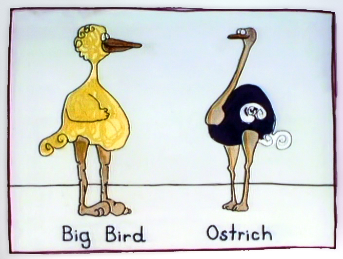 The Noble Ostrich