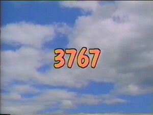 3767.jpg