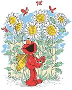 Elmossunflowers