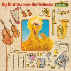 Album.bigbirdorchestra.jpg