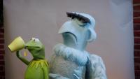 MuppetsNow-S01E01-Photobomber-TeaMeme