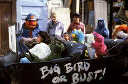 Follow That Bird Oscar car.jpg