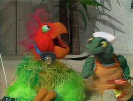 Parrot I Go To Rio