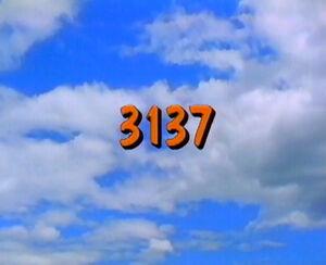 3137.jpg
