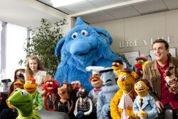Muppets 2011 group shot.jpg