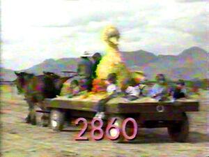 2860.jpg