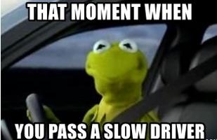 Kermit driving (1)