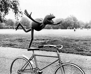 Kermitbicyclegmc.jpg