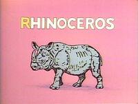 Rhino Limerick
