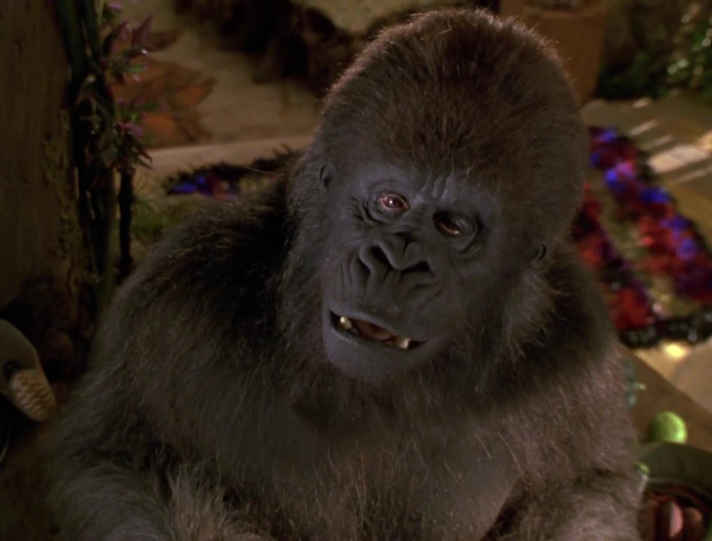 An Ape Named Ape